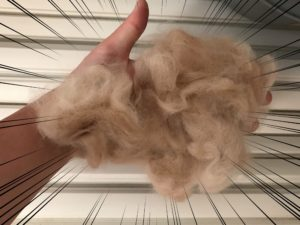 うさぎの毛